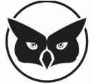 Guardian Owl SEO logo
