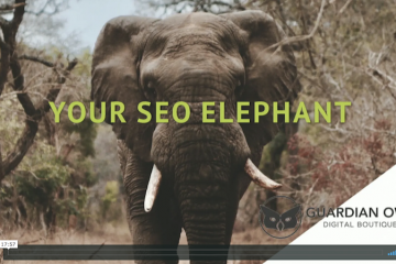 Your Company's SEO Elephant